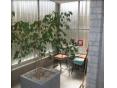 דירה להשכרה לתקופה קצרה  2.5 חדרים 130$ ללילה, נתניה